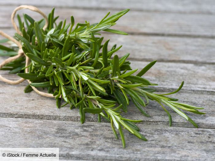 Rosemary: what are its health benefits?