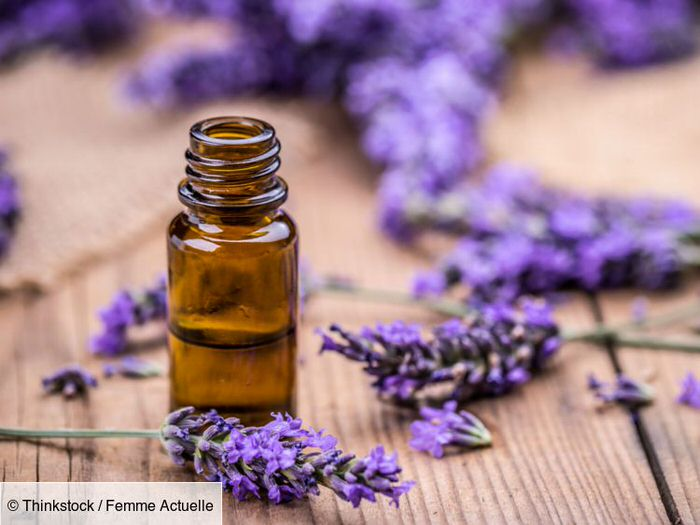 The health benefits of lavender
