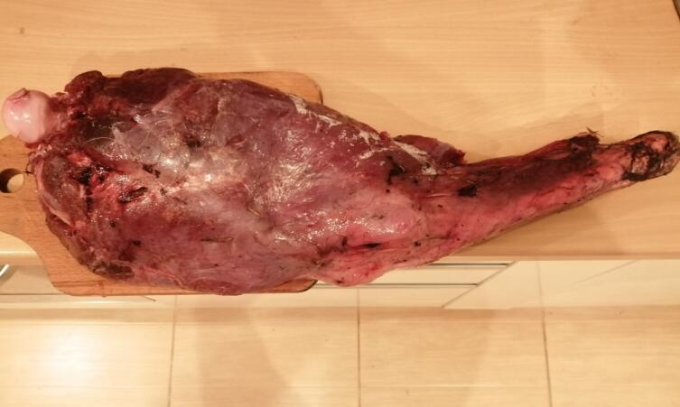 The other day, the guys brought me a bear leg